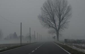 strada nebbia