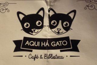 parole gatos